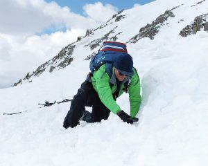 Avalanche Transceivers. Why You Must Have One